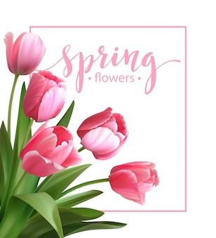 Texto de primavera com flor tulipa.