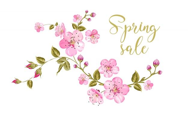 Texto de venda primavera sobre fundo branco com brunch de flor de sakura.