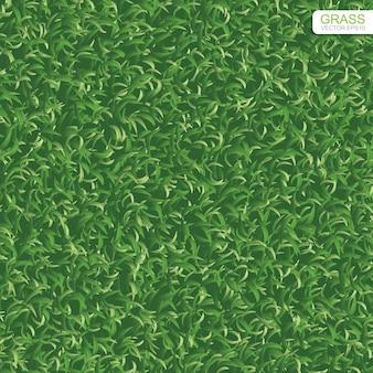 Textura de grama de gramado verde para segundo plano.