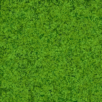 Textura de grama verde realista natural