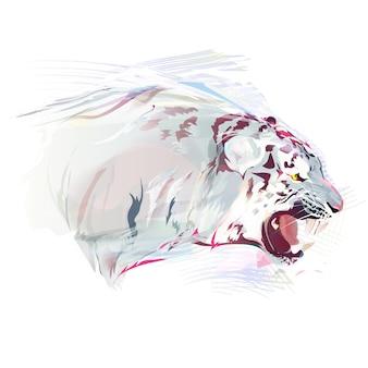 Tigre branco, ilustração em aquarela