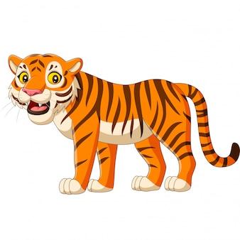 Tigre dos desenhos animados, isolado no branco