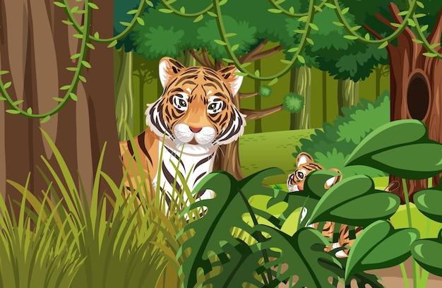 Tigre escondido na selva