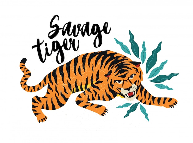 Tigre selvagem.