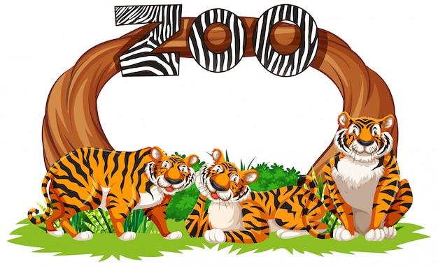 Tigres com sinal de entrada do zoológico