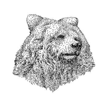 Tinta de cabeça de urso em estilo vintage.