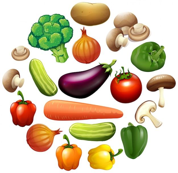 Tipo diferente de vegetais