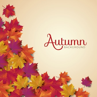 Tipografia de autumnlayout decorar com folhas