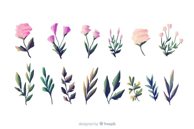 Tipos de folhagem e flora em fundo branco