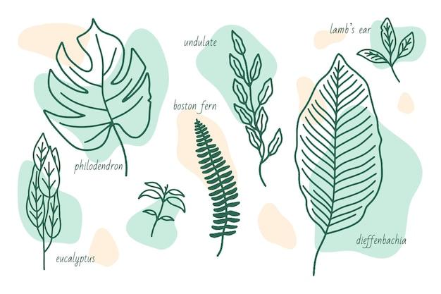 Tipos de folhas desenhadas à mão com formas abstratas