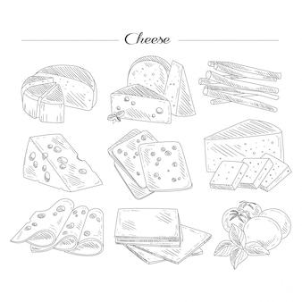 Tipos de queijo. conjunto handdrawn