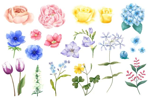 Tipos diferentes de flores ilustradas isoladas no fundo branco.