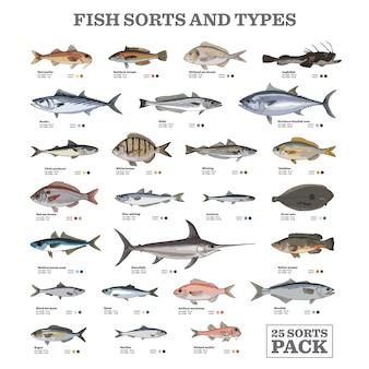 Tipos e tipos de peixe