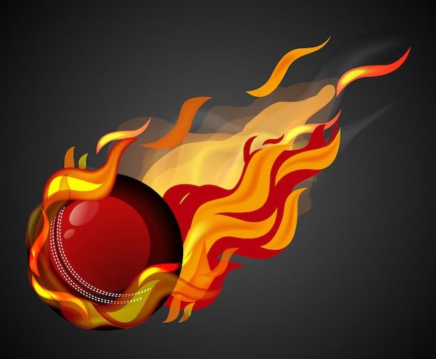 Tiro de críquete com chama em fundo preto