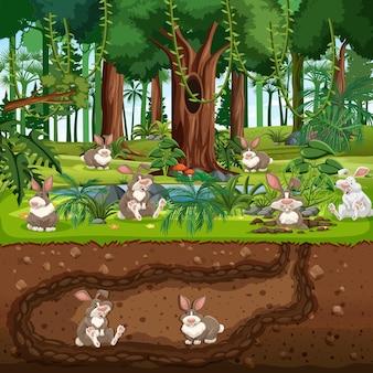 Toca de animais subterrânea com família de coelhos