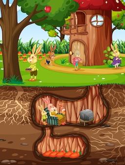 Toca do coelho subterrânea com a superfície do solo do cenário do jardim