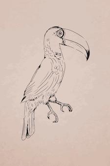 Toco tucano desenhado à mão