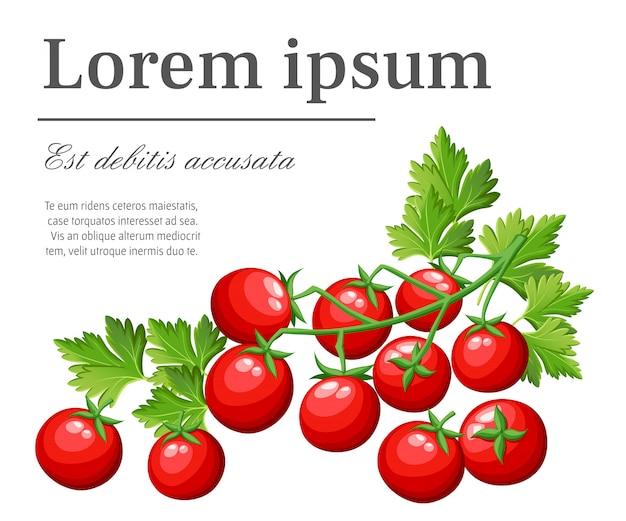 Tomates cereja frescos vegetais do jardim alimentos orgânicos tomate vermelho em ilustração de galho verde com lugar para seu texto na página do site e aplicativo móvel com fundo branco