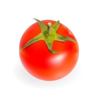 Tomates frescos, isolados na ilustração vetorial de fundo branco. eps10