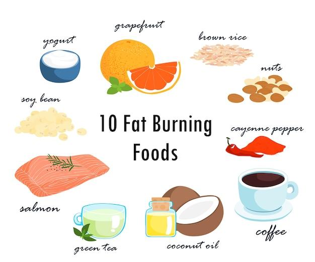Top dez gordura queimando alimentos gordurosos