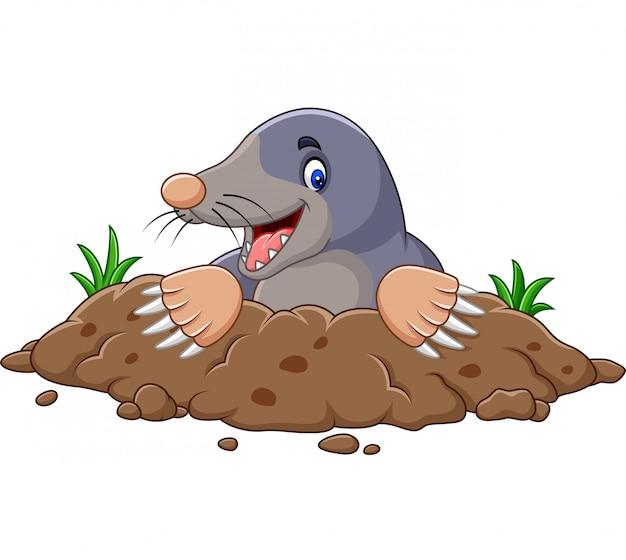 Toupeira dos desenhos animados sair do buraco