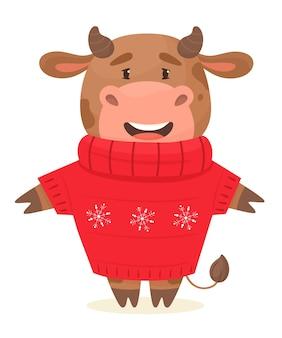Touro bonito com um suéter.