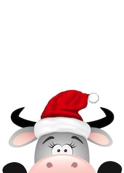 Touro cinza engraçado sobre fundo branco. natal