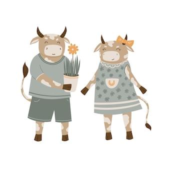 Touros apaixonados animais bonitos dos desenhos animados românticos o homem do touro dá um vaso com uma flor para a vaca