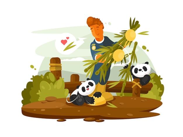 Trabalhador do zoológico alimenta pandas animais fofos de bambu