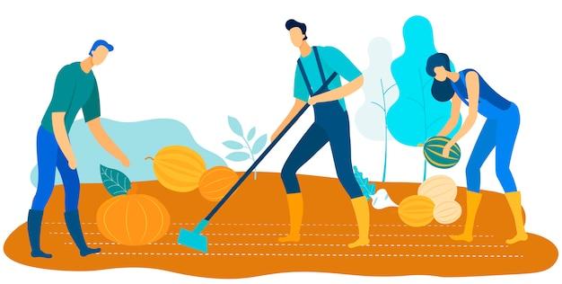 Trabalhadores, colheita, fazenda, crescer, legumes, e, frutas