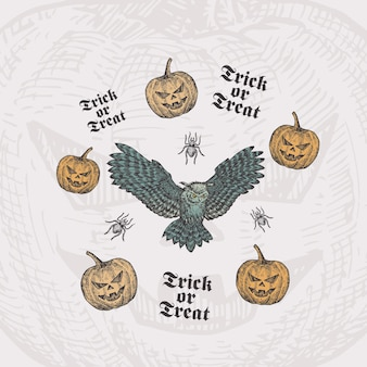 Travessuras ou gostosuras de halloween desenhado à mão, coruja voadora e abóboras com desenho de aranha