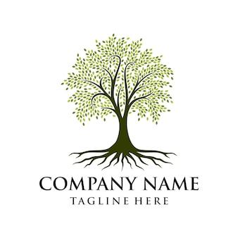 Tree logo design root vector inspiração do design do logotipo da árvore da vida