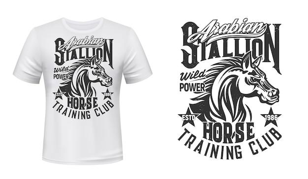 Treino de cavalos, t-shirt do clube equestre