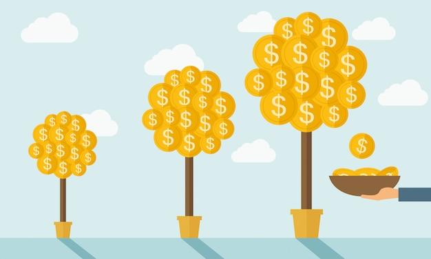 Três árvores de dinheiro