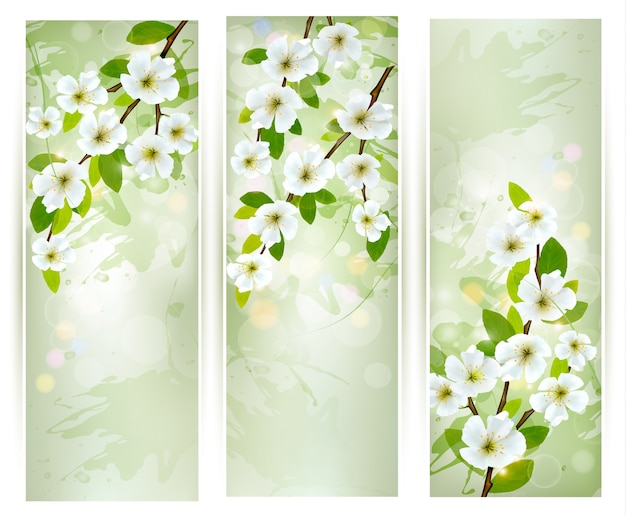 Três banners com galhos de árvores em flor