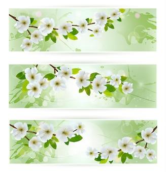 Três banners de natureza com galhos de árvores florescendo.