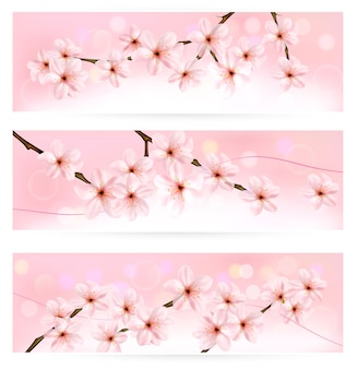 Três banners de primavera com brunch na árvore florida com flores da primavera