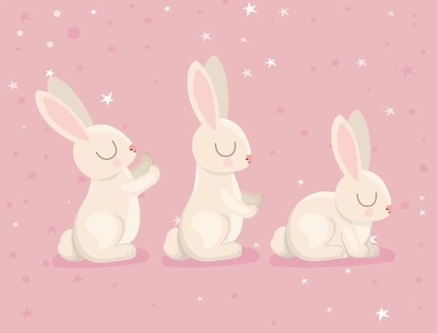 Tres coelhinhos lindos