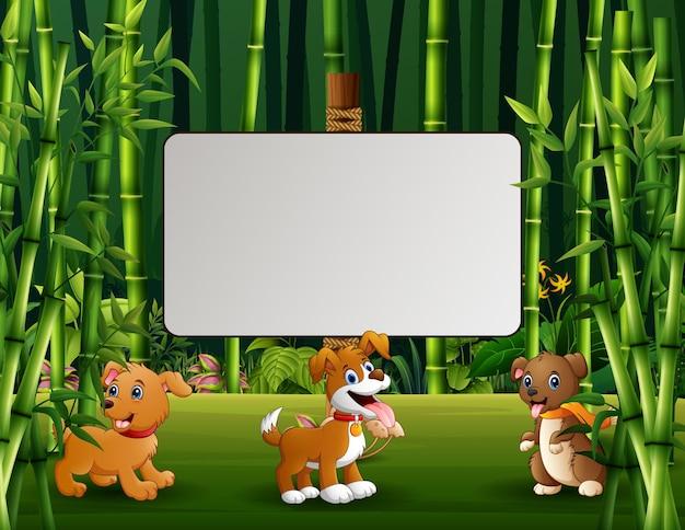Três dos cães ilustração dos desenhos animados com uma placa em branco na floresta