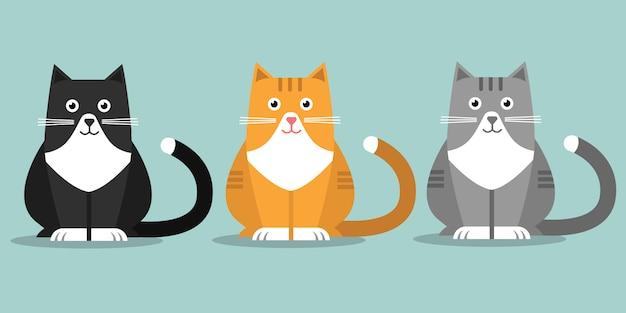 Três gatos fofos