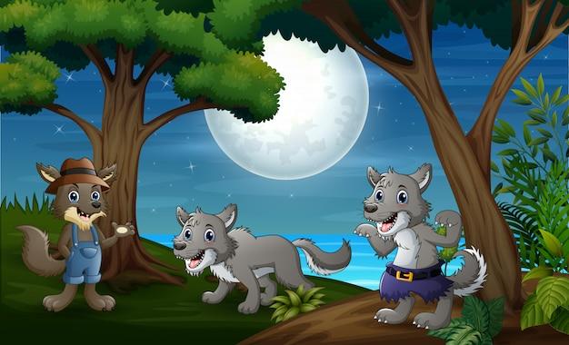 Três lobos caçam à noite