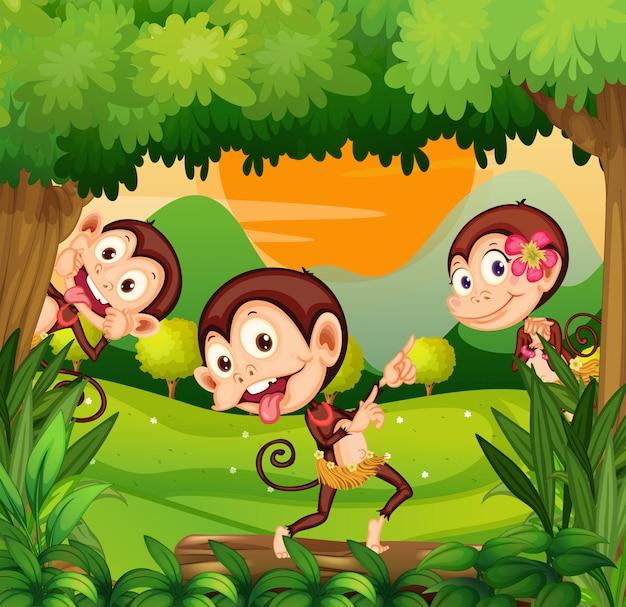 Três macacos dançando na floresta