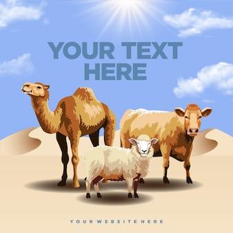 Três mamíferos que podem ser sacrificados em vacas e ovelhas eid aladha camels
