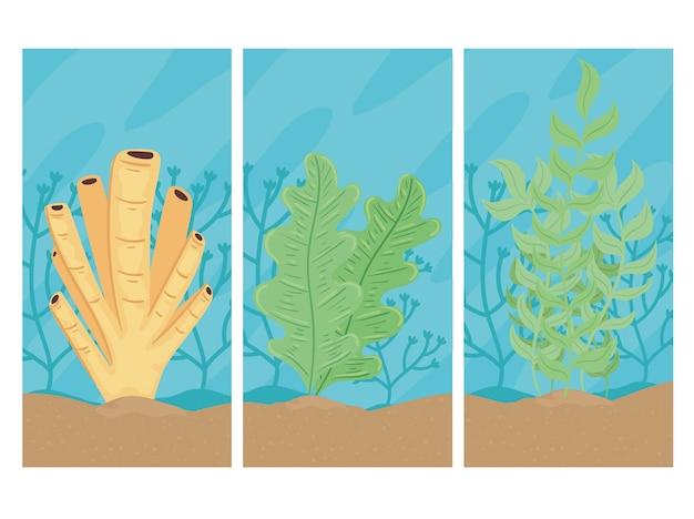 Três mundos subaquáticos com ilustração de cenas de paisagens de algas marinhas