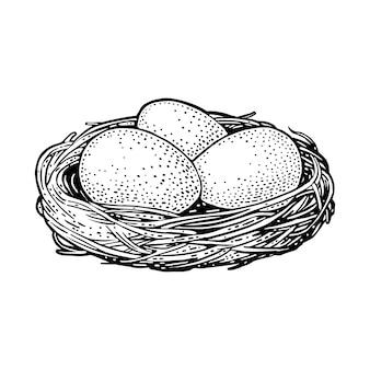 Três ovos de aves no ninho