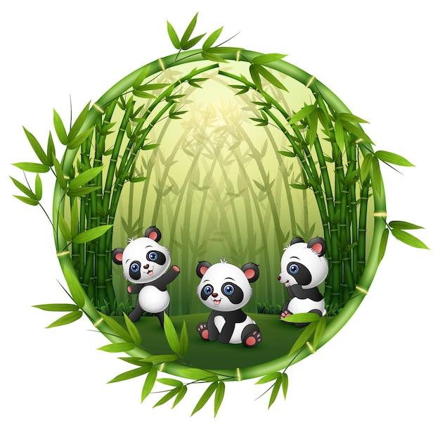 Três pequeno panda estão jogando juntos