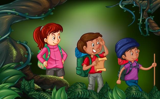 Três pessoas caminhando na floresta