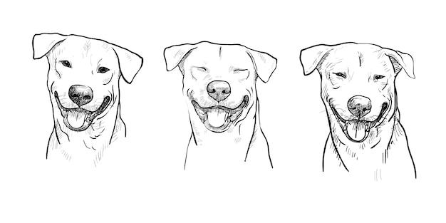 Três retrato de cachorro sorrindo