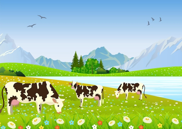 Três vacas em uma paisagem e uma fazenda. prados e montanhas conceito de comida orgânica e natural. ilustração vetorial