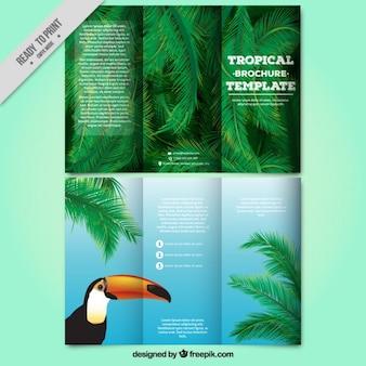 Trifold tropical com um tucano e folhas de palmeira